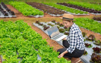 Food Marketing: cosa deve avere un sito web per la ristorazione