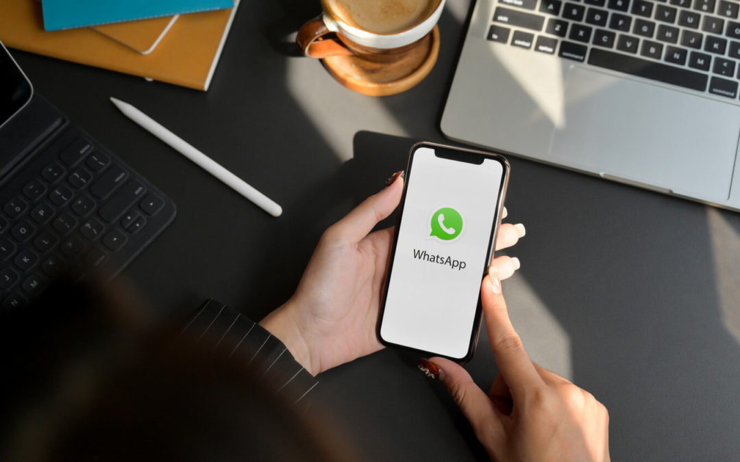 Cos'è l'API di WhatsApp Business
